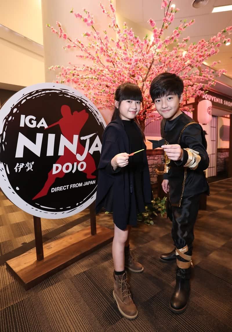 Ninja Maze