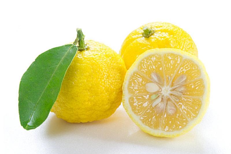เสริมสร้าง ภูมิคุ้มกัน ให้ร่างกาย ส้มยูสุ