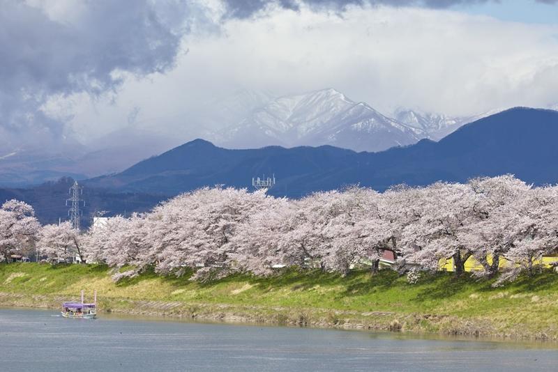 Before our spring 10 จุดน่าไปยามเมื่อดอกไม้บาน มิยางิ