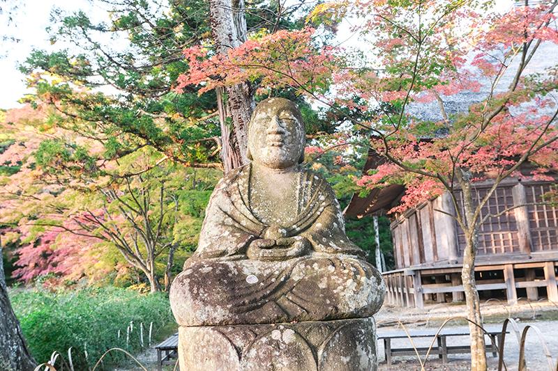 ทริปตามล่าใบไม้แดงที่โทโฮคุ Tohoku วัดโมซึจิ Motsuji Temple