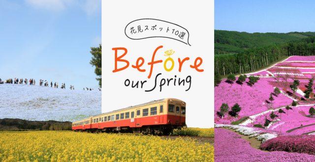 Before our spring 10 จุดน่าไปยามเมื่อดอกไม้บาน