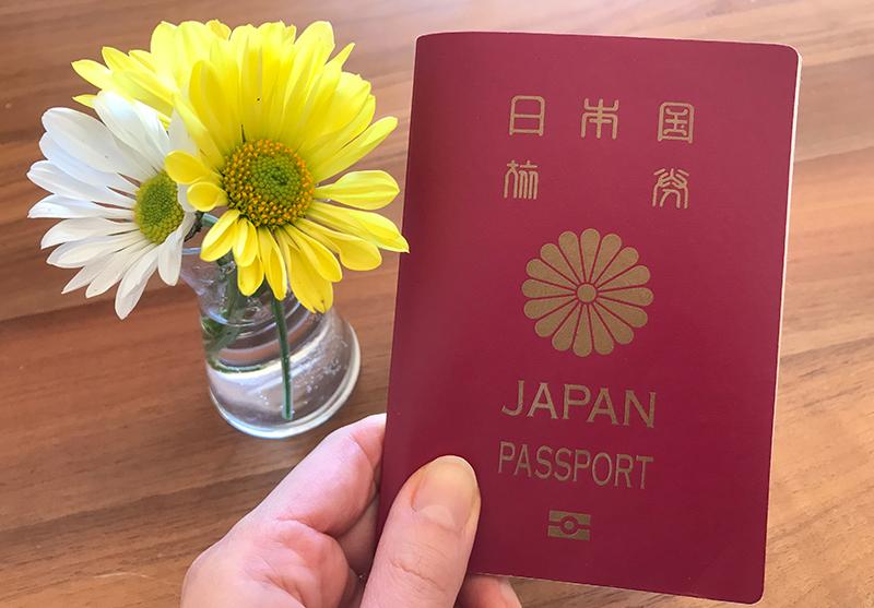 ซากุระ (Sakura) และเบญจมาศ (Kiku) ดอกไม้ประจำชาติญี่ปุ่น