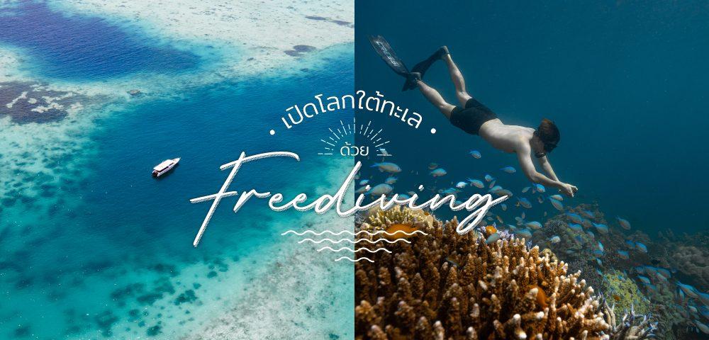 """ชวนไปเปิดโลกใต้ทะเล ด้วย """"Freediving"""""""